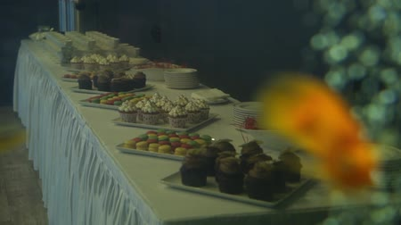 vdolky : Golden fish in a freshwater aquarium slowmotion, cupcakes and desserts at background