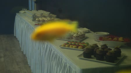 vanilya : Golden fish in a freshwater aquarium slowmotion, cupcakes and desserts at background