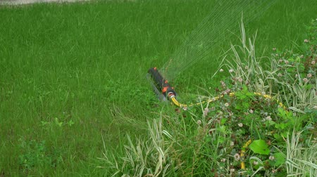 paving : Automatic sprinkler system watering the lawn on a background of green grass near house in a city