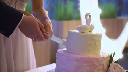 elegant dessert : Wedding celebration cake bride and groom cutting slice