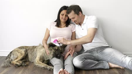 Young couple expecting baby and their dog Стоковые видеозаписи