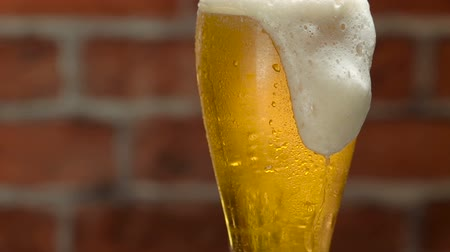 cervejaria : Glass of beer with froth and water drops over brick wall Stock Footage