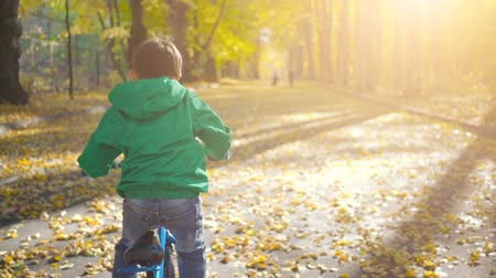 ciclismo : Little boy riding blue bicycle in the city park in autumn