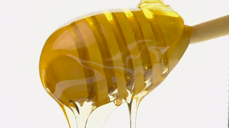 drizzler : dripping honey on white background
