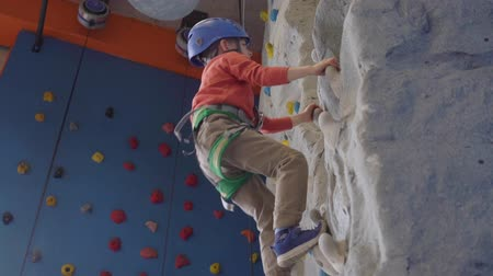 harness : little active boy climbing at indoor