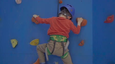 plac zabaw : Little preschool boy, climbing wall indoors, having fun, active children