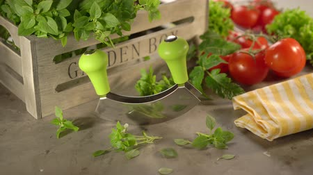 condimento : Cinemagraph fresh basil, tomatoes with a mezzaluna knife and wooden box on the stone background