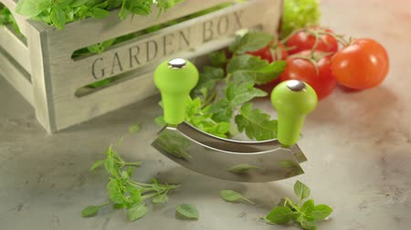 oregano : Fresh garden herbs and chopping knife with wooden box Stock Footage