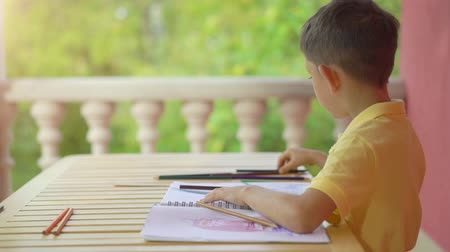 fiatalos : Cute little boy drawing in his album on green nature background Stock mozgókép