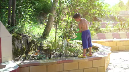 kutuları : little boy watering plants from a garden watering can Stok Video