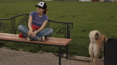 kobieta pies : A dog jumping in the lap of a girl. Wideo
