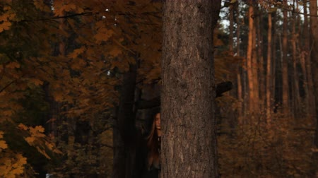 prowl : A girl in a hoody with her hair loose who holds a tree with her hand takes the hood off and looks around sullenly on the prowl. In a dark forest. Stock Footage