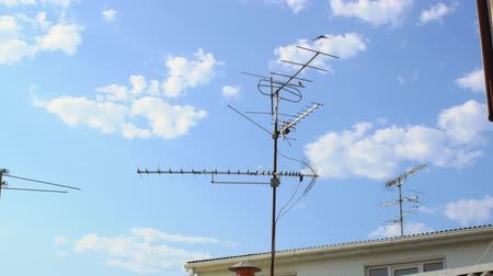 old radio : Birds flying around the wire tv antenna.