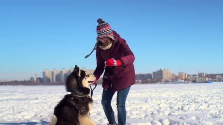 snowy background : Beatiful young woman playing with her Husky dog on frozen river against background of cityscape Stock Footage