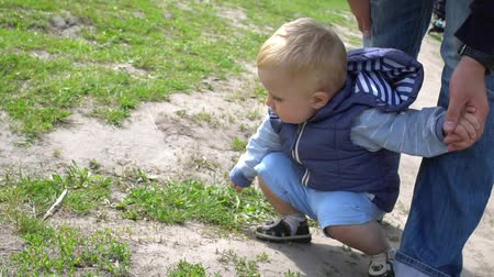 learning to walk : Father shows his son an ant in a park Sunny day
