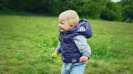 learning to walk : First steps of cute little boy in park