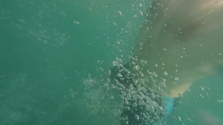 POV of man with beard swimming in sea water on sunny day Summertime