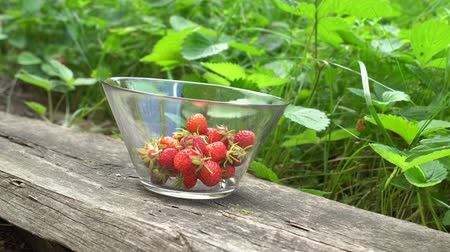 Fresh organic strawberries in glass bowl in old english garden with green background Summertime Wideo