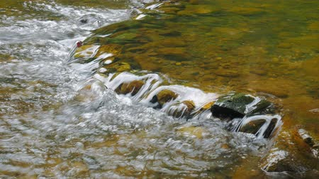 salpicos : Beautiful mountain river flowing stones in the nature forest.