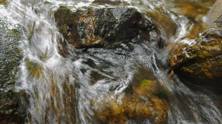 Beautiful mountain river flowing stones in the nature forest.