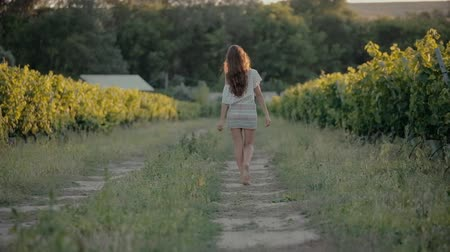garden route : Fashionably dressed girl in a short skirt walks along the vineyard Stock Footage