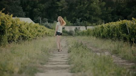 francês : Blonde walks between the rows with grapes grown in the countryside