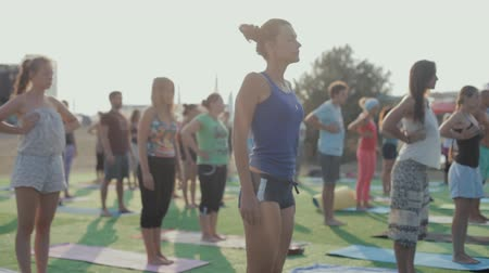 meditação : Group of young people making yoga exercises in a warm summer day on a beach
