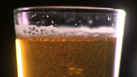 besinler : Close up shot of beer being poured into a beer glassmug. Stok Video