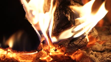 lutador : Flames and fiery coals filmed at 120fps. Stock Footage