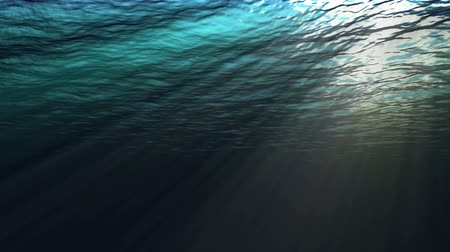 skleník : Seamless looping computer generated view of an ocean underwater scene. This is a high quality non-openGL rendering.