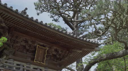 visitante : A view of the roof in the Hagiwara Tea Garden in San Francisco