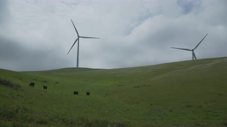 obnovitelný : View of The Altamont Pass Wind Farm, located in the Altamont Pass of the Diablo Range in Northern California. It is one of the earliest wind farms in the United States. At one time the largest wind farm in the world in terms of capacity. Altamont Pass is