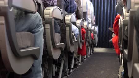 steward : A typical scene on an airplane during the flight