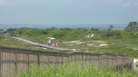 istiridye : Wide view of a family walking out to Ho Hum beach on Fire Island on a gorgeous sunny day