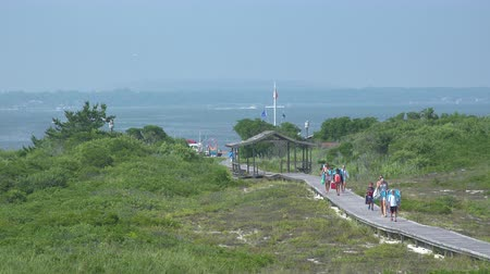 istiridye : A view of the boardwalk at Ho Hum beach on Fire Island on a gorgeous sunny day