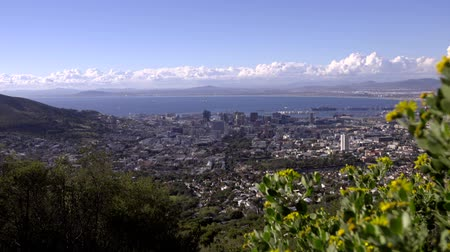 View looking down over Cape Town Stock Footage