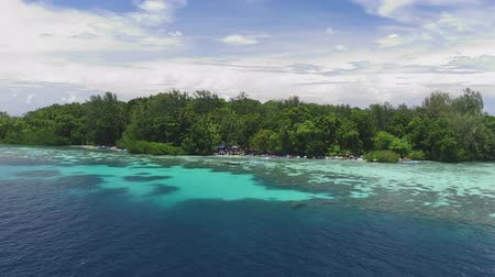 melanesia : Solomon islands. Flight near one of the islands. Stock Footage