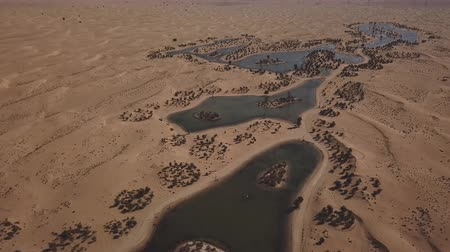 An overview of man made Al Qudra Lake and Oasis in Dubai. (aerial photography)