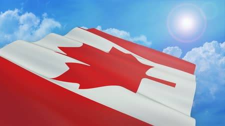 Close-up view of the flag of canada on white background (3d render) - alpha mask - loop
