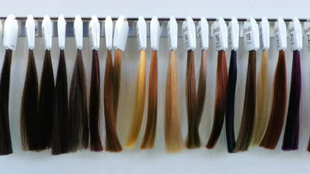 peruka : hair dye strands samples hair dresser
