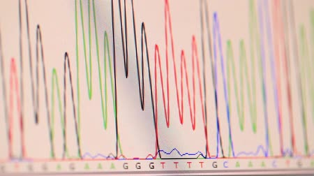 aborígene : genetic chromatogram on a computer screen Stock Footage