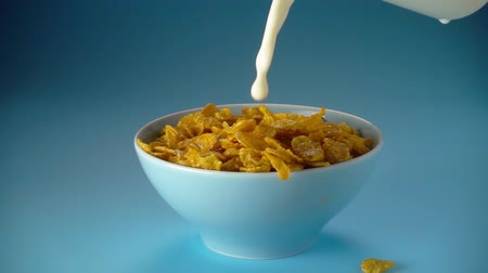 flocos de milho : Corn flakes and milk falling  in a bowl, slow motion 500 fps Stock Footage