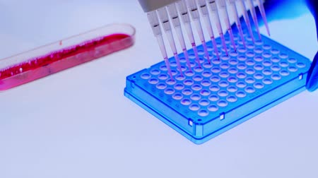 генетика : Pcr Processing In Genetic Laboratory