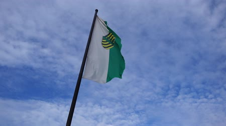 almanca : Flag of Saxony
