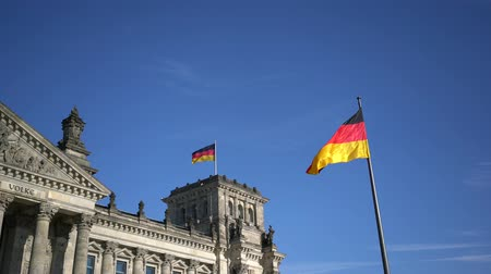 bundestag : Flag of Germany against the background of the Reichstag Stock Footage