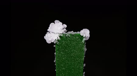 growth of salt crystals on a black background time lapse