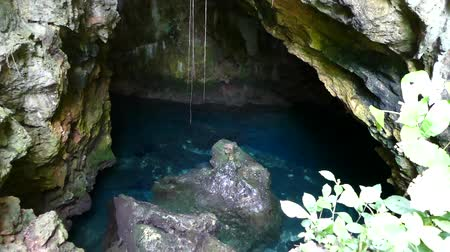 премьера : and a hidden limestone cave in the middle of Zanzibar