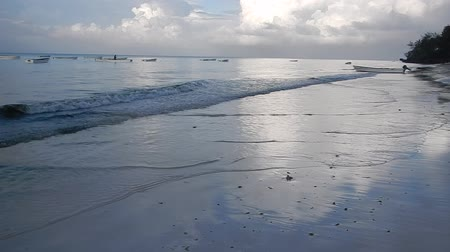 Танзания : beautiful coast with sandy beach and calm sea in zanzibar Стоковые видеозаписи