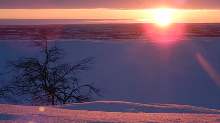 szibéria : beautiful lappland landscape panorama in winter