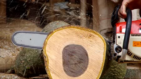 лесоматериалы : Chainsaw cutting wood in the yard of the house